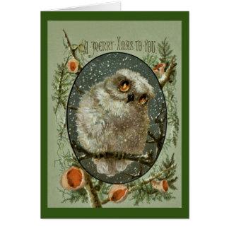 Cartão Coruja do Feliz Natal