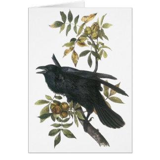 Cartão Corvo comum, audubon de John