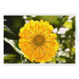 Cartão Cosmo amarelo