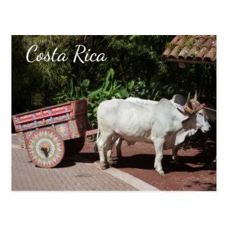 Cartão Costa Rica Oxcart Cartão Postal