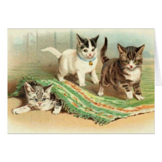 Cartão Couro cru dos gatinhos - e - busca