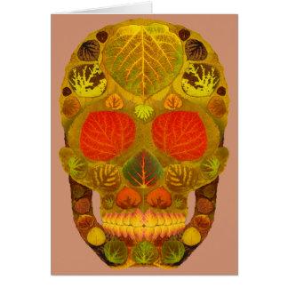 Cartão Crânio 12 da folha de Aspen