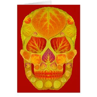 Cartão Crânio 13 da folha de Aspen