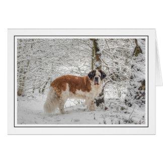 Cartão Cumprimento fotográfico do Natal da neve de St