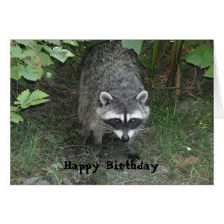 Cartão Cumprimento inteligente do aniversário do guaxinim