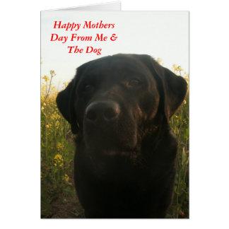 Cartão Cumprimentos do dia das mães