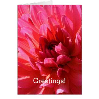 Cartão Cumprimentos florais! Flor cor-de-rosa da dália do
