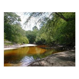 Cartão - curvatura do rio