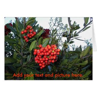 Cartão Customcard do Natal: Adicione seus texto e imagem…