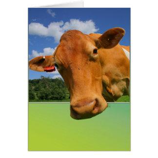 Cartão Customisable - cara da vaca