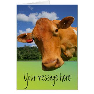 Cartão customisable da cara da vaca