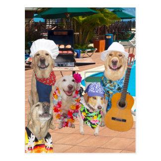 Cartão customizável da festa na piscina do cão