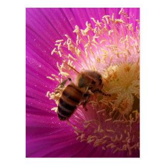 Cartão da abelha