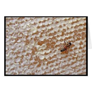 cartão da abelha do mel
