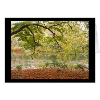 Cartão da acção de graças das folhas de outono