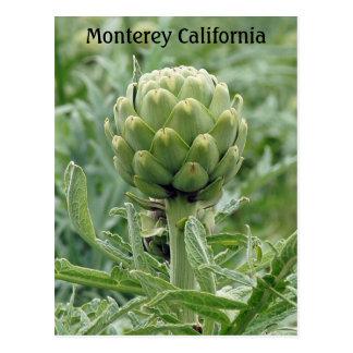 Cartão da alcachofra de Monterey Califórnia