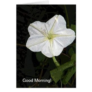 Cartão da amizade da glória de bom dia