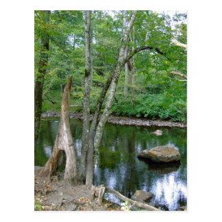 Cartão da angra de North Carolina