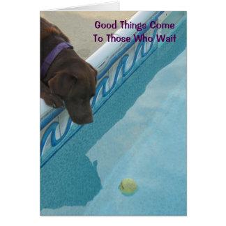 Cartão da aposentadoria para amantes do cão