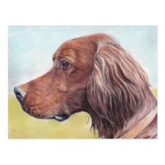 Cartão da arte do cão do setter irlandês