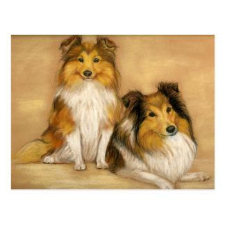 Cartão da arte do cão do Sheepdog de Shetland
