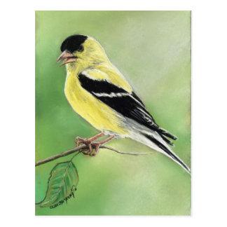 """Cartão da arte do pássaro do """"Goldfinch"""""""