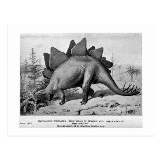Cartão da arte do ungulatus do Stegosaurus
