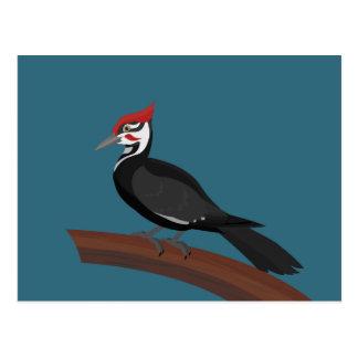 Cartão da arte do vetor do pica-pau de Pileated