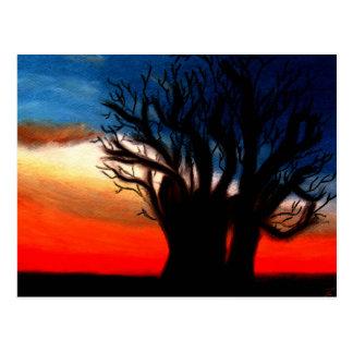 Cartão da árvore de Pari Chumroo Baobob Cartão Postal