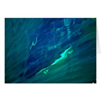 Cartão da baleia da orca do mar de Washington
