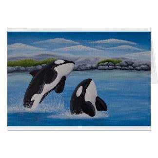 Cartão da baleia de assassino (orca)