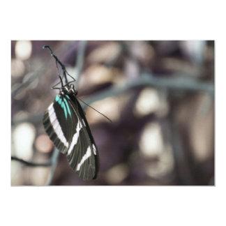 Cartão da borboleta convite 12.7 x 17.78cm