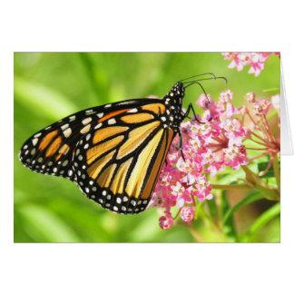 Cartão da borboleta de monarca, incluir dos