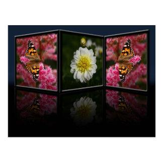 Cartão da borboleta e da dália
