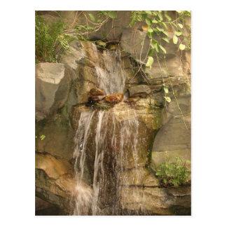 Cartão da cachoeira!