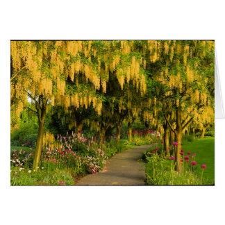 Cartão da caminhada do jardim