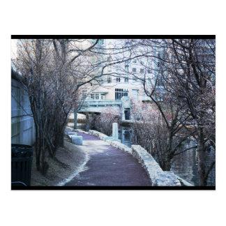 Cartão da caminhada do rio do providência