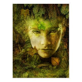 Cartão da camuflagem
