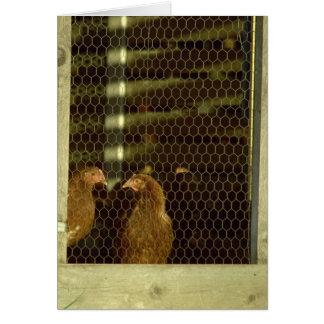 Cartão da capoeira de galinha