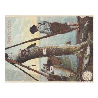 Cartão da captura do esturjão & dos salmões