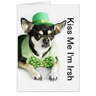 Cartão da chihuahua do dia de St Patrick feliz