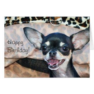 Cartão da chihuahua do feliz aniversario