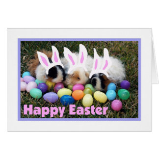 Cartão da cobaia do coelhinho da Páscoa