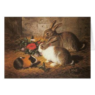Cartão da cobaia e dos coelhos