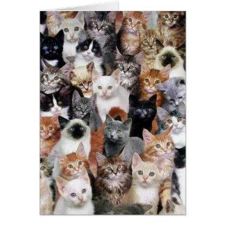 Cartão da colagem do gato