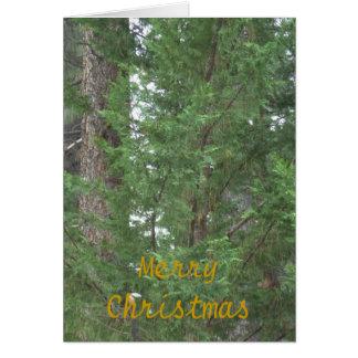 Cartão da coleção do Natal de Lake Tahoe