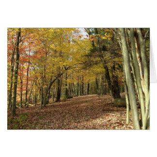 Cartão da colheita das bênçãos do outono
