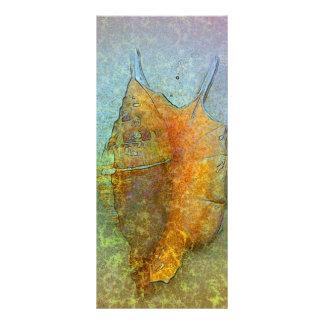 Cartão da cremalheira do SEASHELL 10.16 X 22.86cm Panfleto