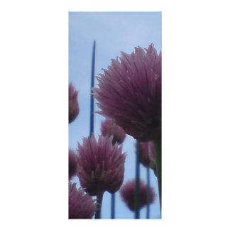 Cartão da cremalheira - imagem    1 do cebolinho 10.16 x 22.86cm panfleto