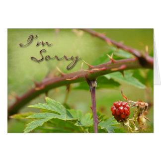 Cartão da desculpa pesaroso para ser espinhoso